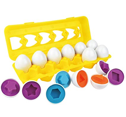 egg shapes with carton